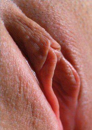Pussy Close Ups Pics